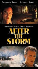 Watch After the Storm Online